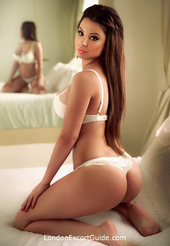 Notting Hill busty Suzana london escort