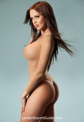 Bayswater busty Katerina london escort