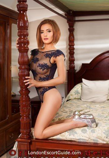 Baker Street brunette Sophia london escort