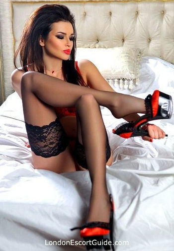 Paddington petite Merlot london escort