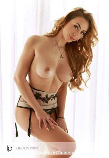 Bayswater  Daria london escort