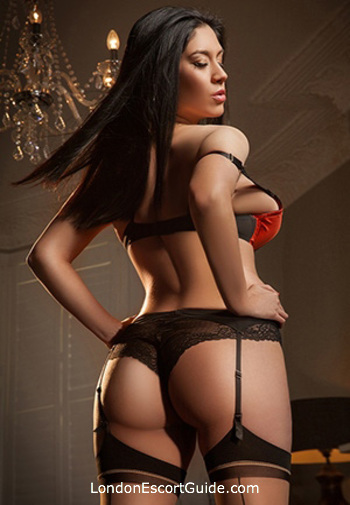 Paddington brunette Veena london escort