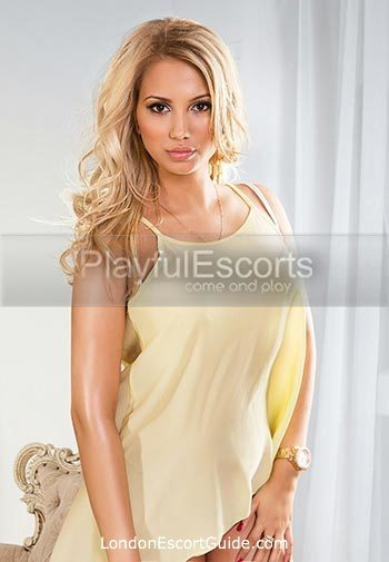 Bayswater value Beverly london escort