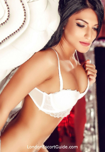 Gloucester Road 200-to-300 Amina london escort