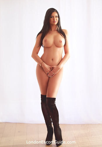 Marble Arch busty Amadore london escort