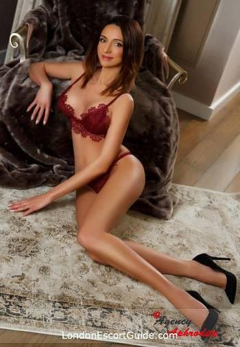Bayswater brunette Evelina london escort
