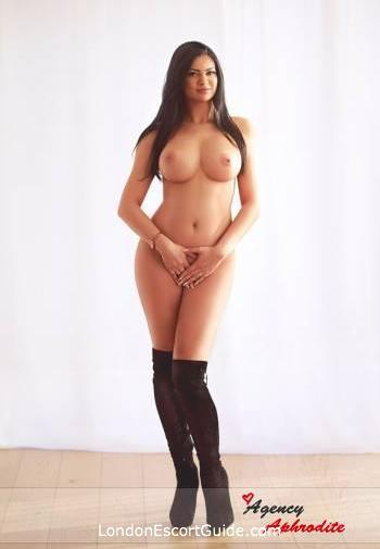 Marble Arch brunette Aylin london escort