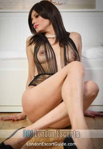 Paddington brunette Safira london escort