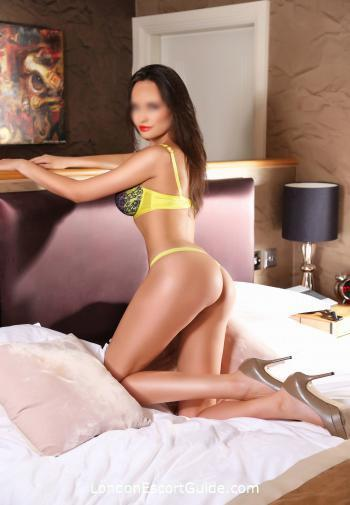 Paddington brunette Dior london escort