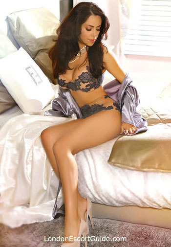 Gloucester Road 200-to-300 Gloria london escort
