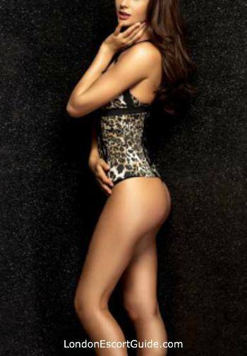 Paddington brunette Sienna london escort