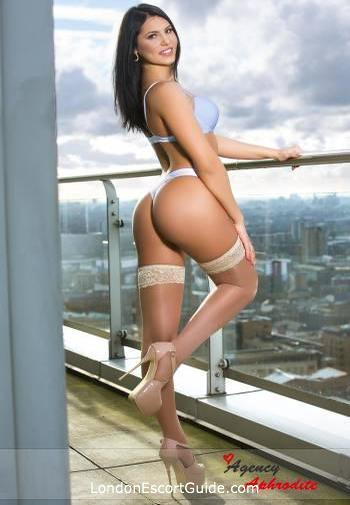 Bayswater brunette Amalia london escort