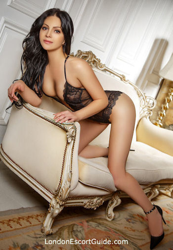 Bayswater brunette Victoria london escort