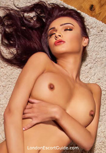 Bayswater busty Evelin london escort