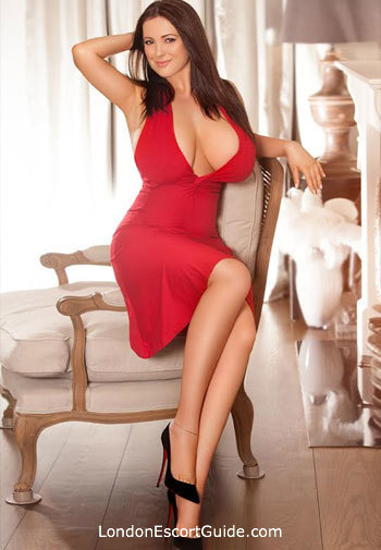 Paddington brunette Fabi london escort