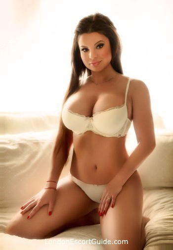 Notting Hill value Shelton london escort