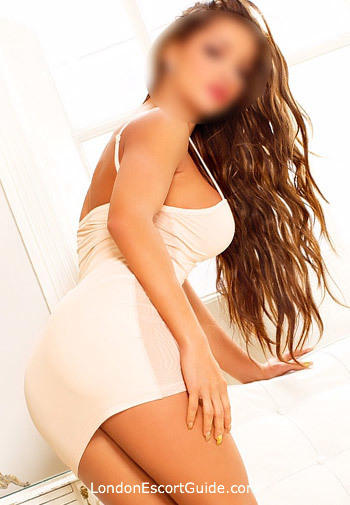 Knightsbridge brunette Cashelle london escort