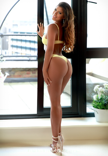Gloucester Road brunette Layla london escort