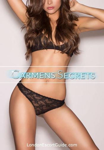 Outcall Only brunette Elle london escort