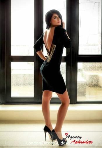 Paddington brunette Carina london escort