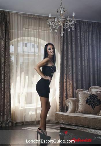 Bayswater value Adelaide london escort