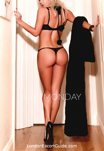Kensington 400-to-600 Estella london escort