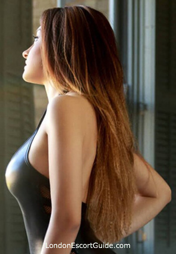 Paddington brunette Darya london escort