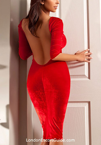Bayswater busty Sophie london escort
